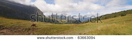 French mountains with green grass and horses from the Aravis pass - France - The Alps - Panorama.