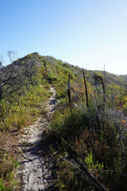 Bibbulmun Track (WA) - Conspicuous Beach to Giants ~ The Long Way's Better
