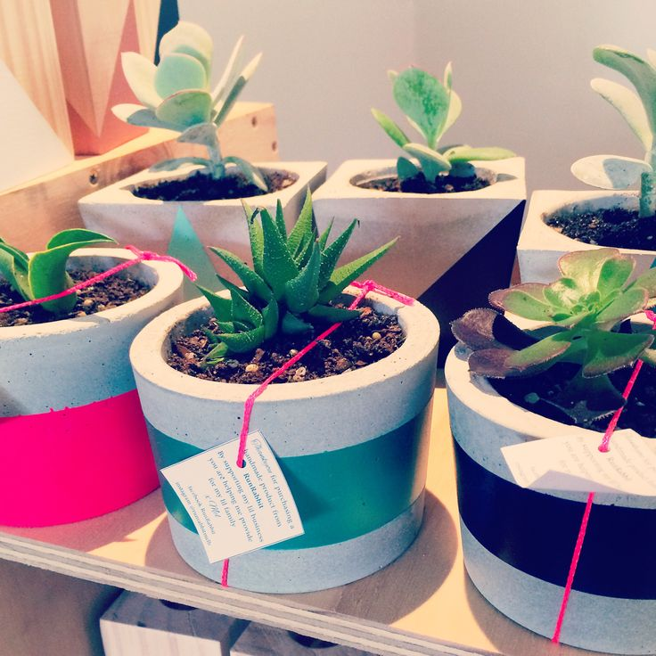 Small concrete planters on their way to our Bentleigh stockist!