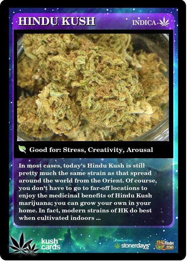 Hindu Kush | Repined By 5280mosli.com | Organic Cannabis College | Top Shelf…