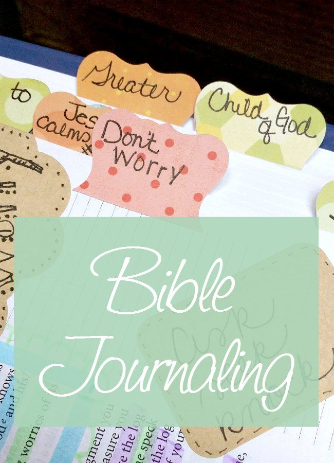 the daily bible in chronological order pdf