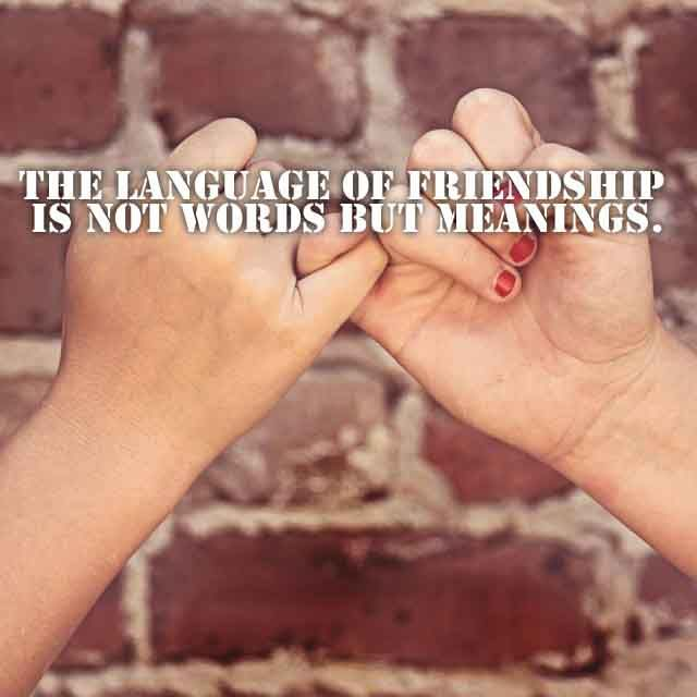 Friendship sayings,Saying about Friends and Friendly Quotes #5 The language of friendship is  not words but meanings.