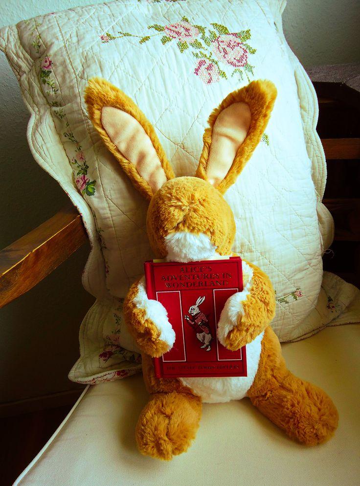 """Man behøver ikke være en hvid kanin for at holde af """"Alice i Eventyrland""""/ Its not just white bunnies that enjoy """"Alice in Wonderland"""".   #Bogligt.dk# #Nostalgilæsning# #Butikastas#"""