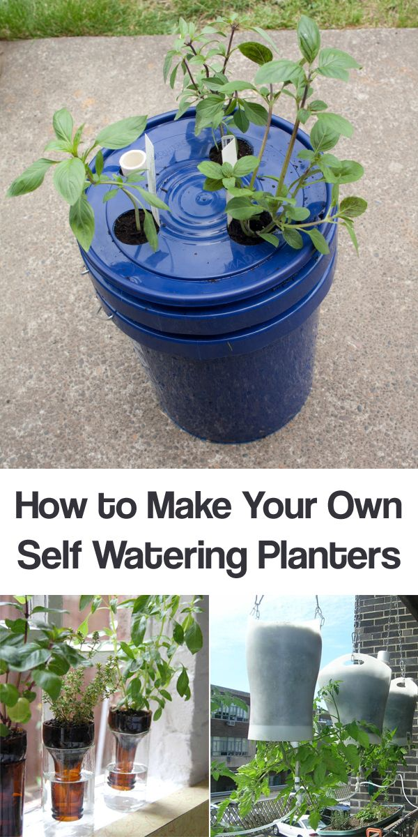 How to Make Your Own Self Watering Planters #gardening