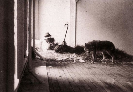 Joseph Beuys. I like America and America likes me 1974