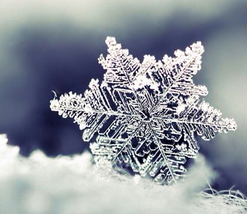 Snowflake #Christmas&winter❄