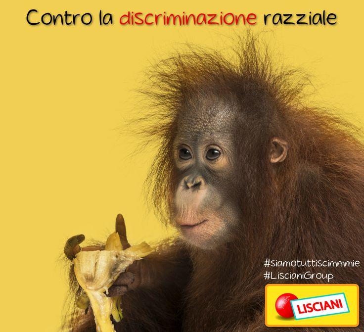 Contro il #razzismo #siamotuttiscimmie www.liscianigroup.com