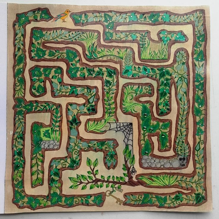 Maze Enchanted Forest By Sueli Soares PicturesColoring BooksColouringJohanna BasfordMazeGardenPainting