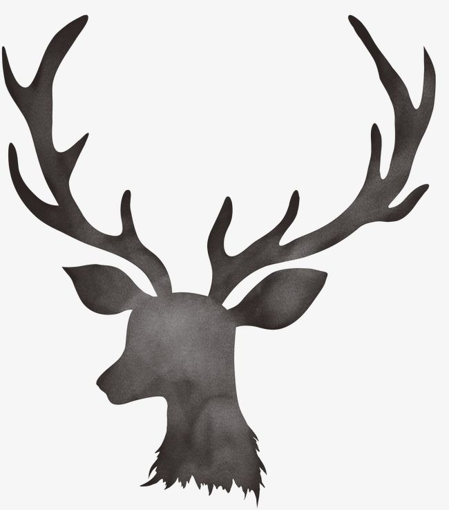 Deer Deer Clipart Antlers Png Transparent Clipart Image And Psd File For Free Download Floral Border Design Deer Wire Jewelry Designs