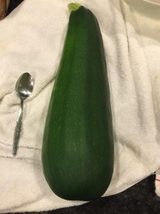 """Canning """"apple pie"""" filling, zucchini"""