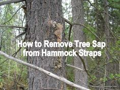 How to Remove Tree Sap from Hammock Straps - https://sectionhiker.com/how-to-remove-tree-sap-from-hammock-straps/