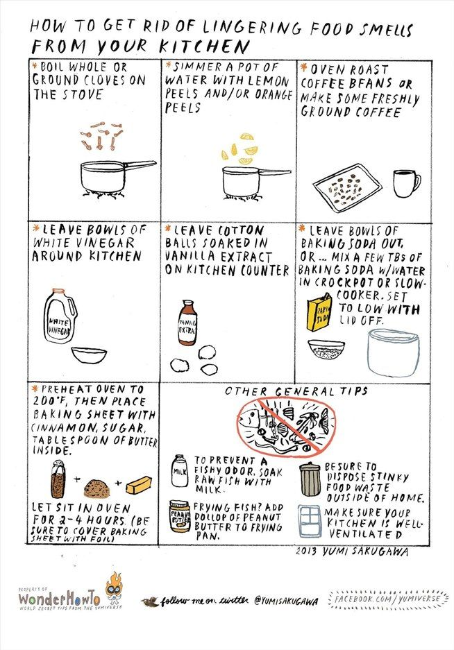 How to Get Rid of Lingering Food Smells in Your Kitchen « The Secret Yumiverse