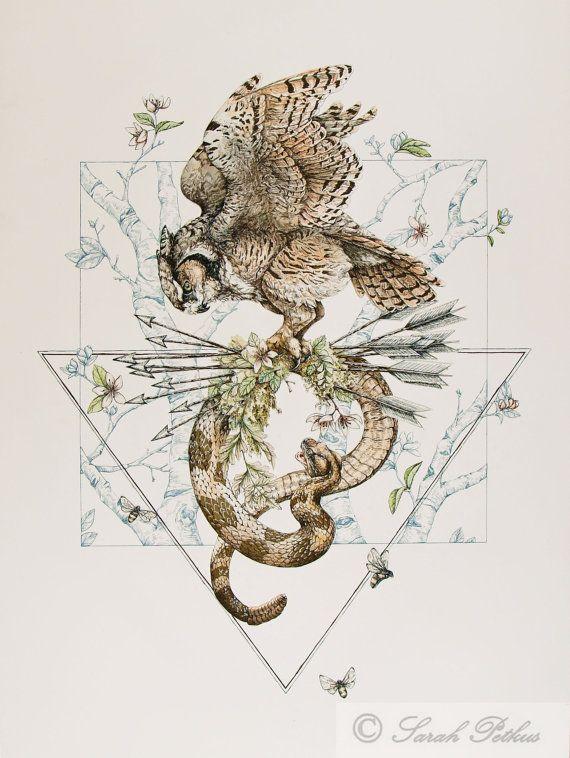 Illustration de serpent de chouette reproduction par NestandBurrow
