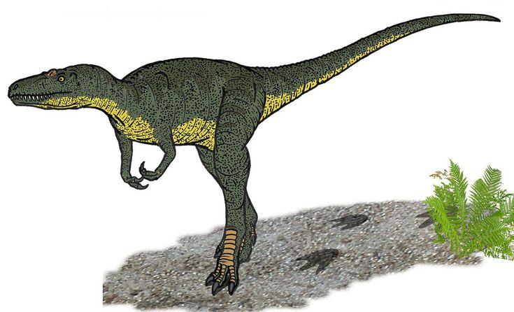 National Geographic a publicat ipoteza paleotologilor Mark Goodwin şi Jack Horner potrivit cărora numărul de dinozauri indentificaţi ar fi mult supraevoluat din cauza morfologiilor majore între tineri şi adulţi.
