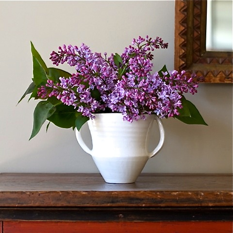 """Now that the lilacs are in bloom / She has a bowl of lilacs in her room.""  - T.S. EliotColors Purple, Spring Flower, Stuff, Lilac, France Palmer Pottery, Spring Arrangements, Shane Pots, Palmer Shane, Purple Flower"