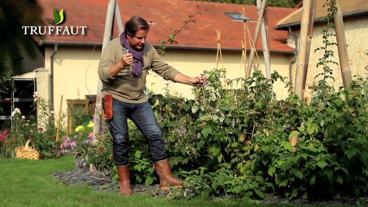 1000 images about truffaut calendrier jardinier on - Que faire au jardin en septembre et octobre ...