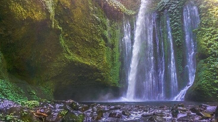 Running Wild And Free - Your love is like a waterfall, waterfall running wild and free