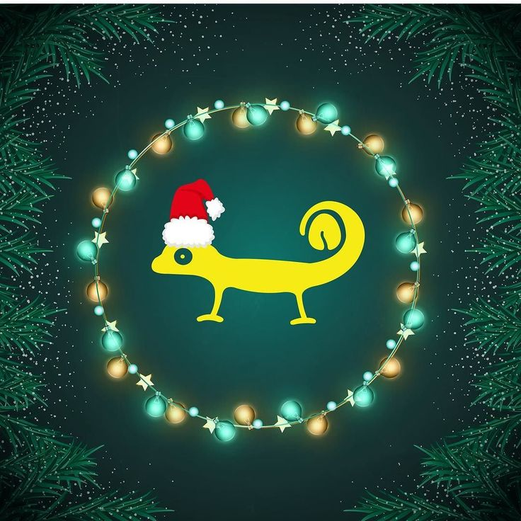 Its the season to be merry - so a big  to all our friends and family and supporters. Drive safe dive safe and say hi to a stranger tomorrow!