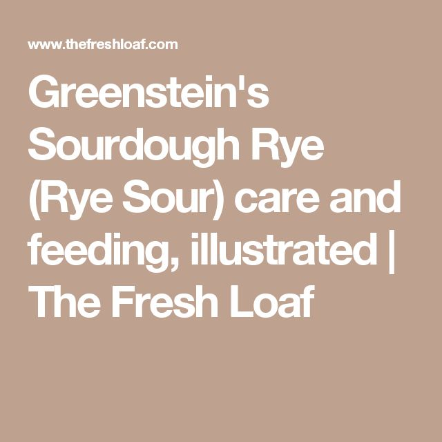 Greenstein's Sourdough Rye (Rye Sour) care and feeding, illustrated | The Fresh Loaf