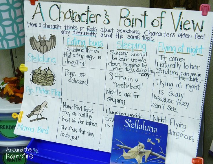 Stellaluna anchor chart for RL.6 comparing the characters' differing points of view