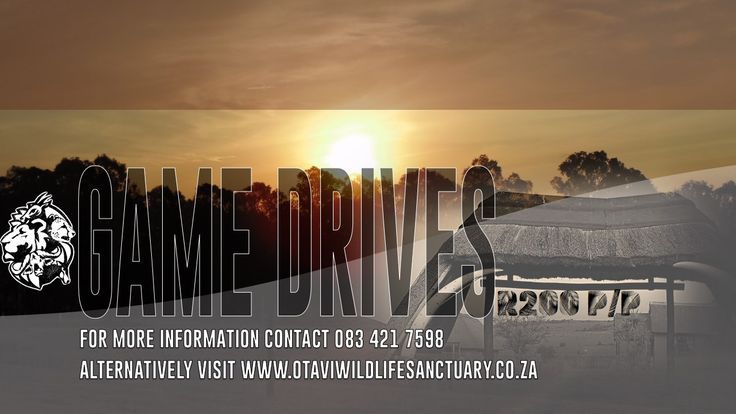 Game Drive Flyer