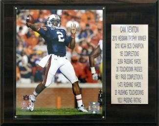 "Auburn Tigers Plaque - Cam Newton 12""x15"" Career Stats"
