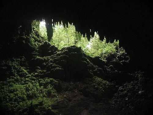 Cuevas de Camuy, Puerto Rico