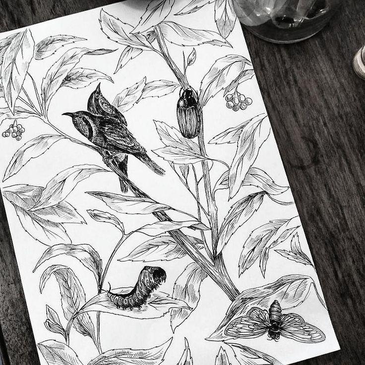 Adaptando un fondo nuevo #plants #free #linework#birds#nature  #barcelona#bcn#barcelonatattoo#blacktattoo #blackline #dotwork #darkartists #granollers#inkstatattoo#inked#blxckink#montseny #hostalric #cardedeu#santceloni#tattoo #tattooartist #mataro #girl #blackworkers #blacktattooart #tatts #instatattoos
