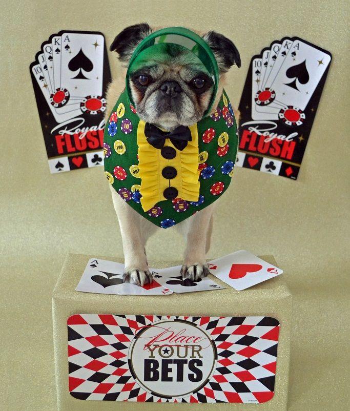 Train poker face