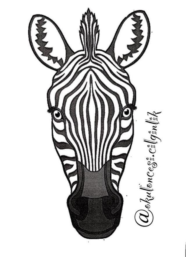 Hediye Cetinkaya Adli Kullanicinin Zebra Panosundaki Pin 3d Boyama Sanat Sanat Etkinlikleri