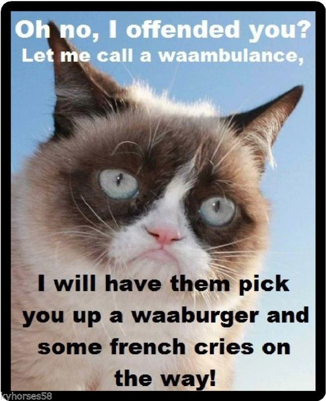 Funny Cat Humor Grumpy Cat Oh, No I Offended You Refrigerator Magnet