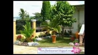 tukang taman surabaya - YouTube