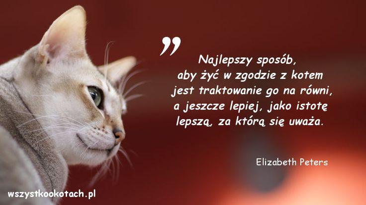 Elizabeth Petters
