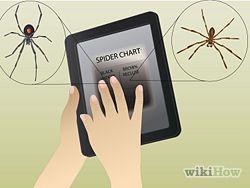 Treat Spider Bites Step 12.jpg