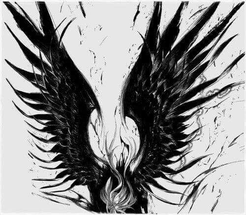 anime black wings anime monochrome manga caps black