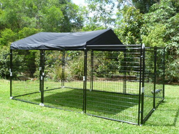 Dog yard cat enclosure and yards on pinterest for Dog run cage enclosure