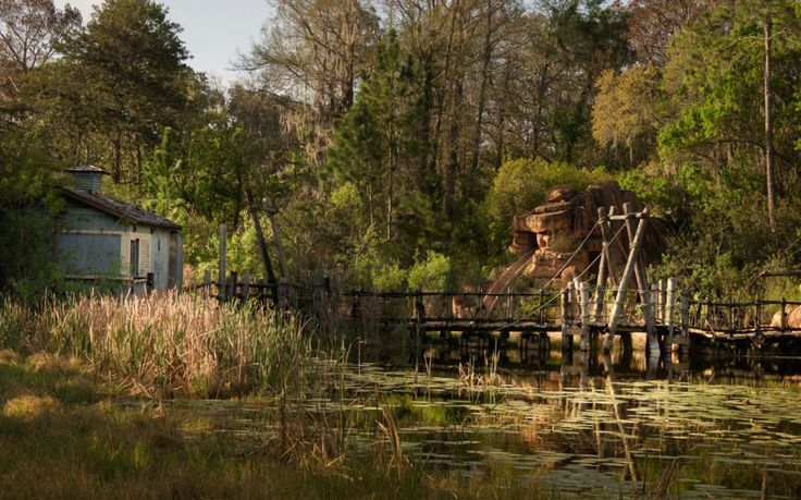 So what does an abandoned Disney park actually look like? For one, it takes on an entirely new kind of beauty, completely taken over by nature and at the whim of the day's weather forecast.