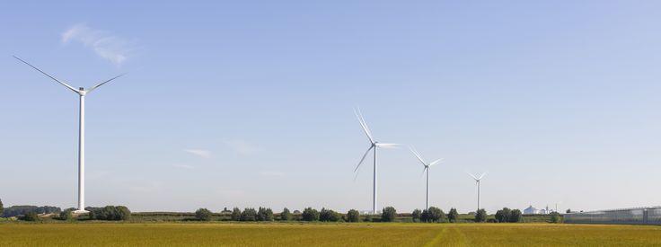 Windpark Nieuw Prinsenland in Steenbergen, Noord-Brabant. Hier wordt genoeg energie opgewekt voor 11.200 huishoudens!