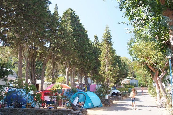 Camping De La Baie (Cavalaire-Sur-Mer, France) - voir les tarifs et avis camping - TripAdvisor
