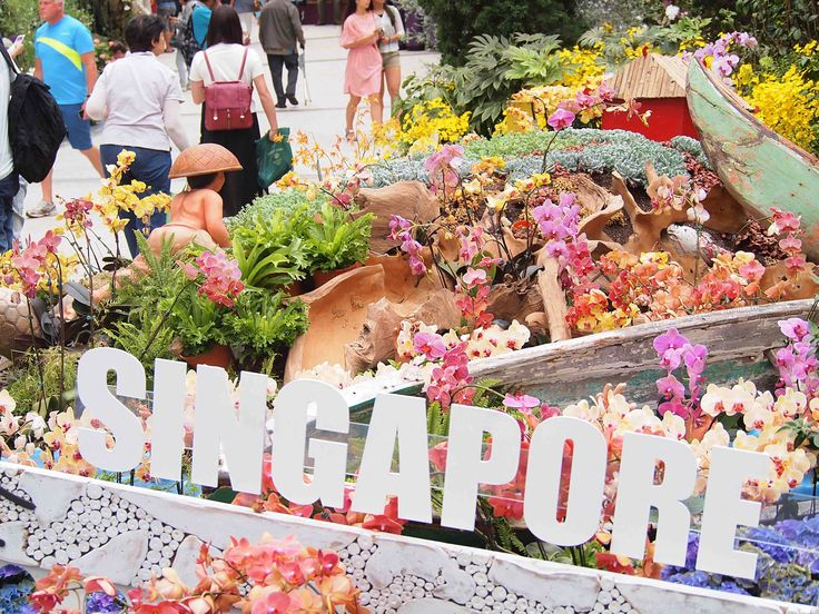 Spectacular Singapore - I love this city! Find out why at wanderingwattle.net