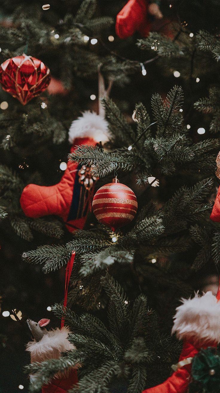 Estos tutoriales te ayudarán a crear tus adornos navideños a tu gusto y estilo. Merry Christmas, Christmas Colors, Christmas Greetings, Christmas Tree Decorations, Xmas Tree, Christmas Tree Wallpaper, Christmas Aesthetic Wallpaper, Red Ornaments, Christmas Ornaments