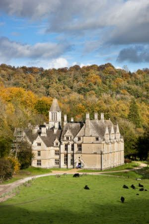 Woodchester Mansion  Gloucestershire. Never lived in, never finished. Beautiful ruins now protected home for bat colony.