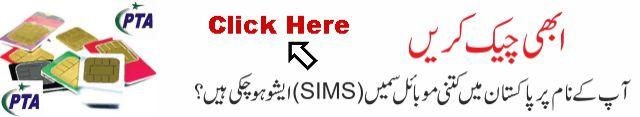 Check Online Sim Info