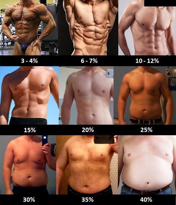Fett abbauen oder Muskeln aufbauen: Was kommt zuerst?