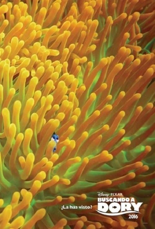 Finding Dory 2016 full Movie HD Free Download DVDrip