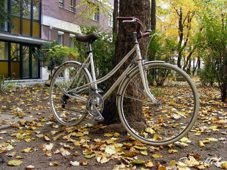 Mucikli NO.1 autumn 1