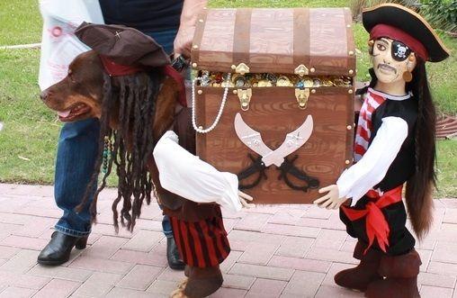 25 costumes d halloween rigolos pour animaux layette pinterest animaux photos et inspiration - Deguisement halloween chien ...