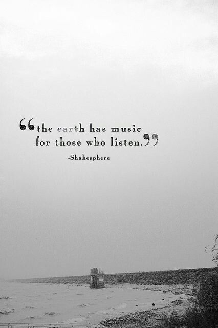 Soundtrack to my life.  Please note that the credit is wrong.  It is not Shakespere (spelled wrong) .  Credit belongs to George Santayana.