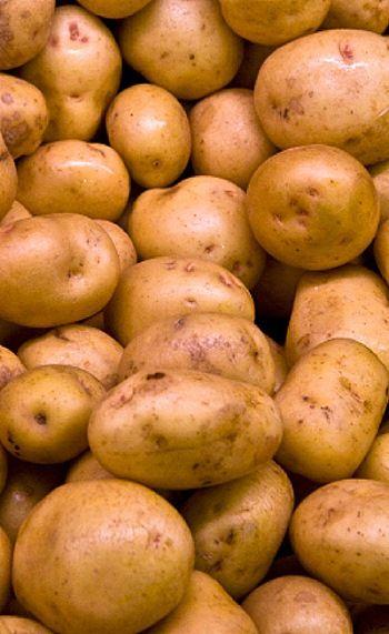 알고 보면 착한 채소, 감자 이미지 1