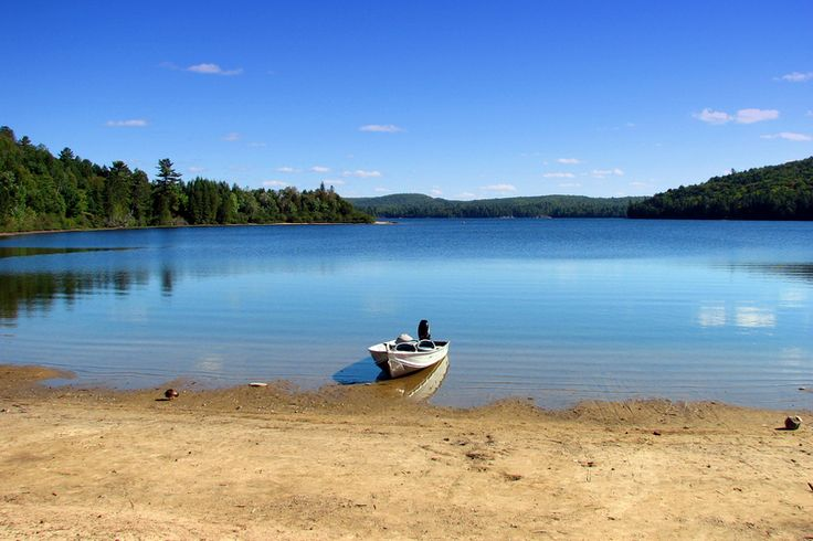 Rock Lake - algonquin-national-park